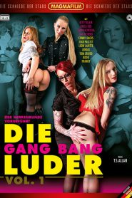 Die Gang Bang Luder 1 Sex Full Movie